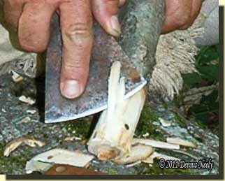 Removing the wild cherry branch's bark with the tomahawk head.