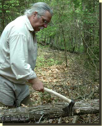 With a single swipe, the tomahawk severes a branch from a red cedar tree.