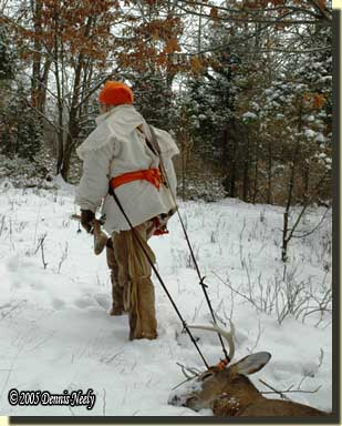 Dragging a deer on the snow using a portage collar.