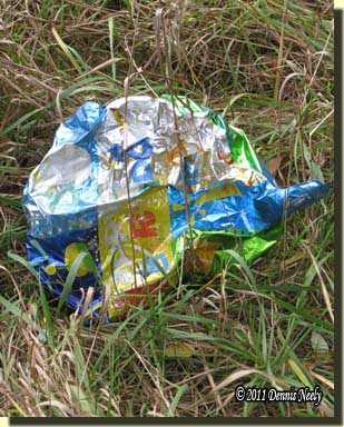 A rumpled, deflated Mylar balloon resting on the grass.