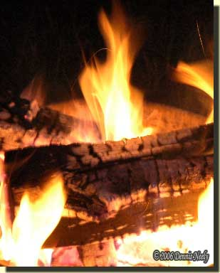 Yellow flames and the cherry-red coals of an evening camp fire.