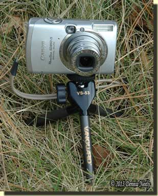 A Cannon digital camera attached to a table-top tripod.