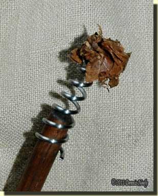 An oak leaf wad caught on the gun worm's spirals.