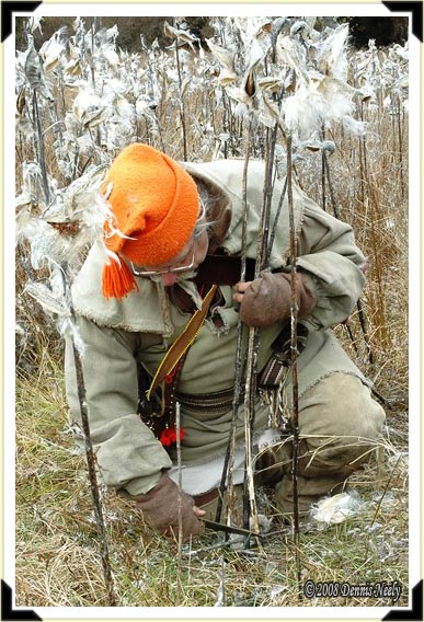 A traditional woodsman cutting dried milk weed stems for cordage.