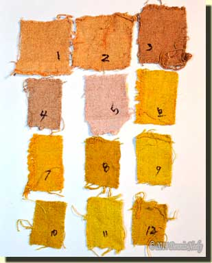 Twelve numbered test swatches.