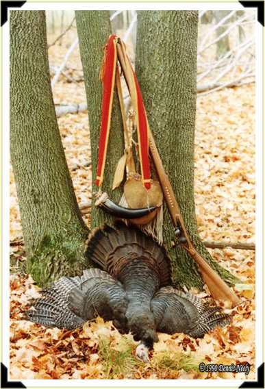 A wild turkey hen laid out in front of a forked maple tree.