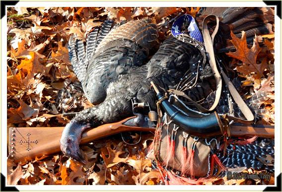 A fine young jake turkey.