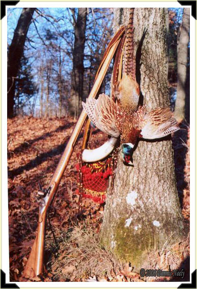 A ring-necked pheasant and a Northwest trade gun.