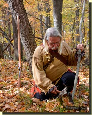 A traditional woodsman cutting a cherry sapling with an ax.