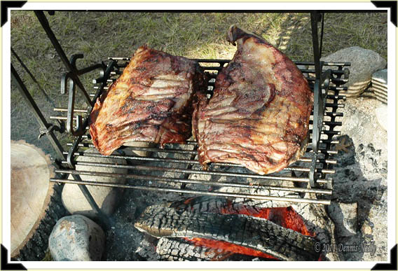 Two racks of venison ribs roasting over an open fire.