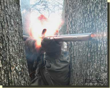 A Northwest gun firing from behind a forked oak tree.