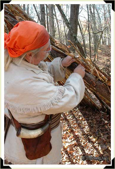A trading post hunter lashes a rafter to a ridge beam for a fall hunting camp.