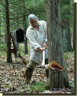 An 18th-century woodsman notches the cedar's trunk.