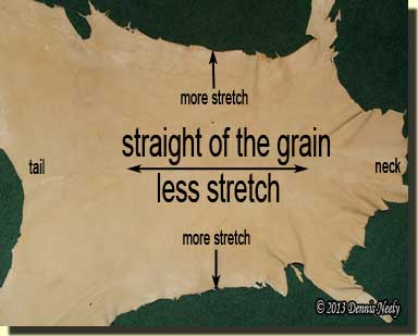 A deerskin hide showing the amount and direction of stretch.