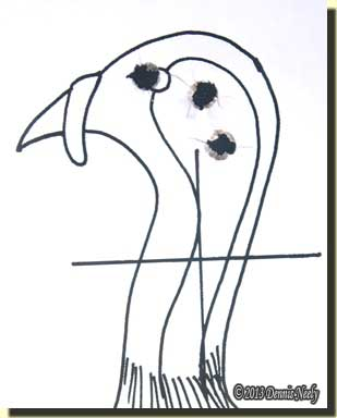 The turkey head target showing the three shots.