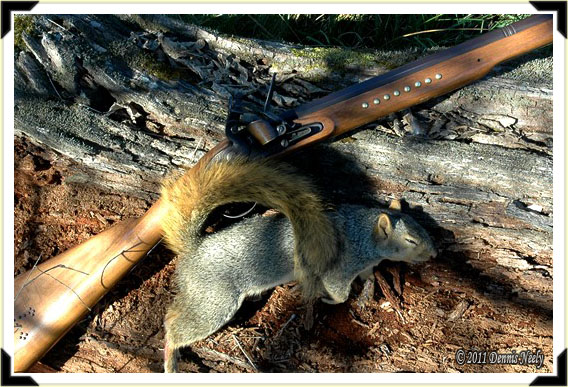 A Northwest trade gun and a fresh fox squirrel.
