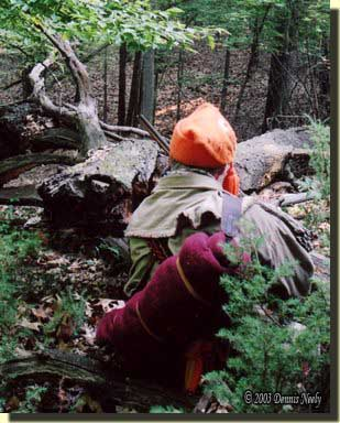 A traditional woodsman kneels behind a downed oak tree with his portage collar and bedroll slung over his shoulder.