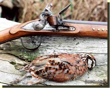A bobwhite quail and a Northwest trade gun.