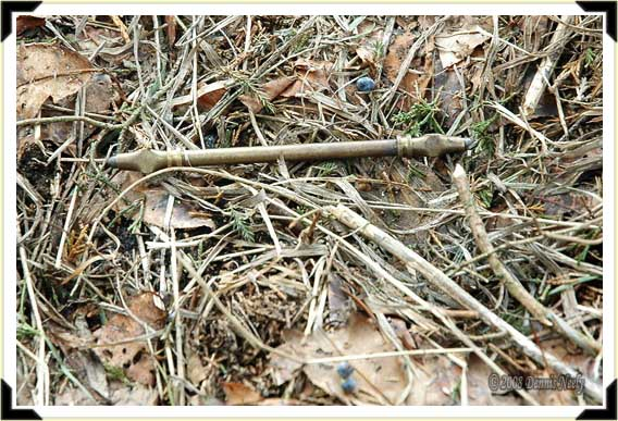 A brass lead-holder lying amongst the leaves and twigs.
