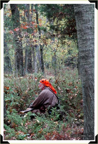 A French woodsman sits in a patch of hemlocks.
