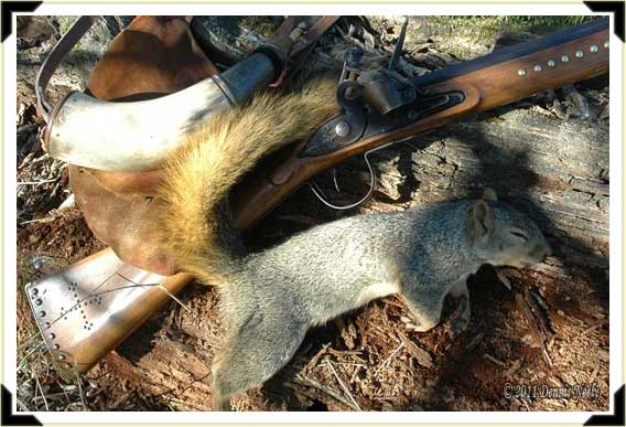 A fox squirrel next to a Northwest gun, shot pouch and horn