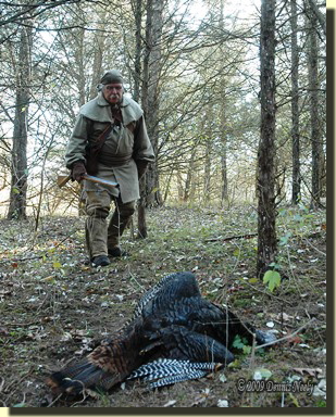 The hired hunter approaches a downed wild turkey in a grove of red cedar trees