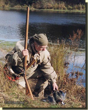 The post hunter kneels to pick up a downed wood duck.